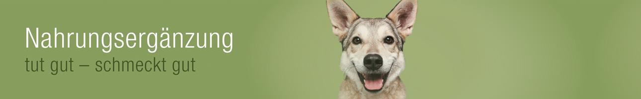 Hundefutter-Nahrungsergänzung für Hunde