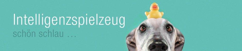 Spiel-Hunde Intelligenzspielzeug