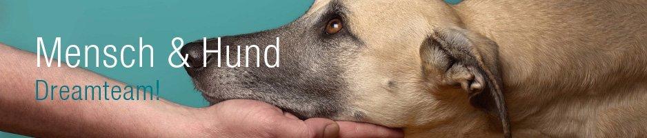 Spiel-Zubehör Mensch & Hund