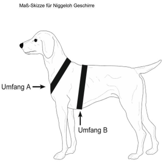 Niggeloh® Hundegeschirr Follow 3 braun XL