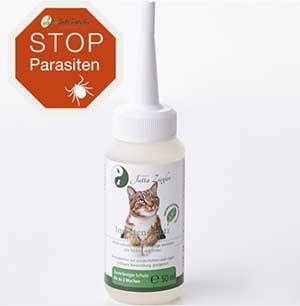 Parasitenschutz für die Katze